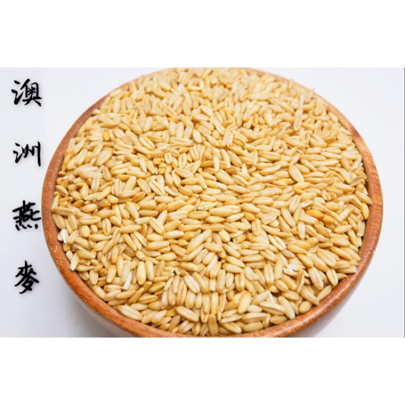 迪化街老店 燕麥 有兩款 一般/有機 澳洲燕麥 燕麥粒 燕麥仁 有機燕麥 十穀飯 小朋友吃可打成米漿 寵物飼料 倉鼠飼料