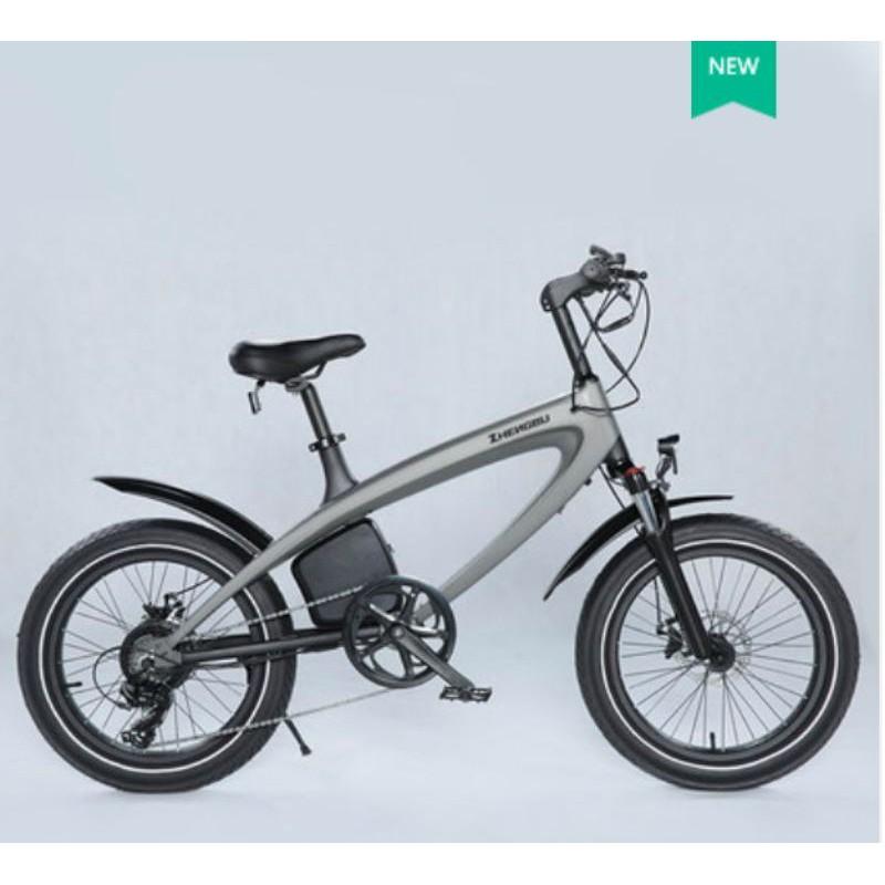 2020年最新款20吋雙電池 碟煞變速電動腳踏車小胖胎