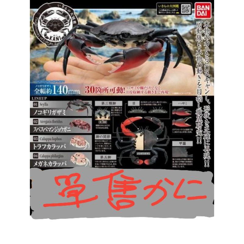 螃蟹 轉蛋 饅頭蟹 扭蛋 環保 鼠婦 萬代 bandai 掌動 ensemble 青蟹