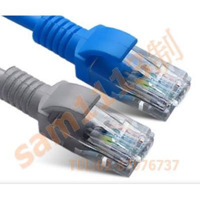 113線材 網路線 高品質 RJ45 CAT.5E 1米網路線 一體成型 機器壓製 >>1個1標