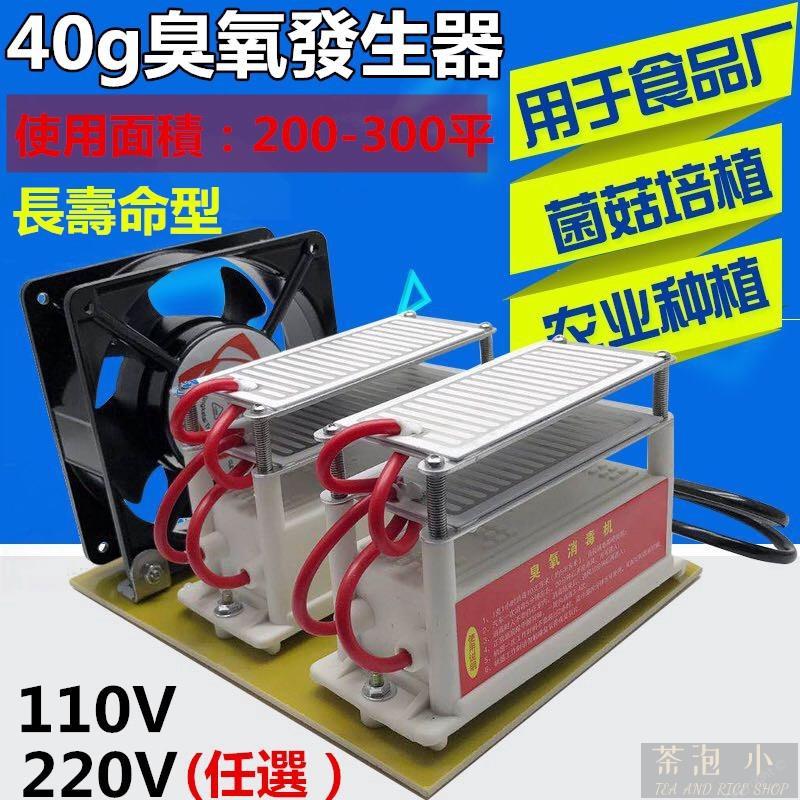 茶泡飯小鋪40g 110v臺灣插頭 臭氧發生器 除甲醛 汽車臭氧機 空氣 臭氧機 空氣凈化機 殺