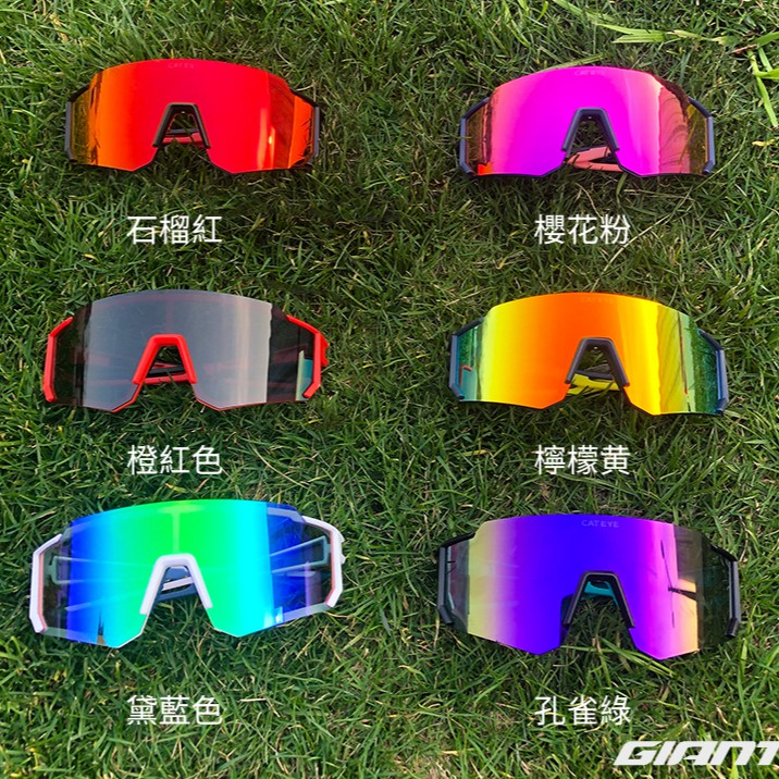 Cateye all rounder polarized / CATEYE A.R. II 8層鍍膜高清偏光太陽眼鏡