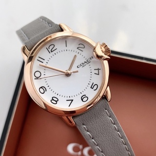 COACH Arden 氣球 系列 皮革 簡約 手錶 Coach手錶 Coach錶