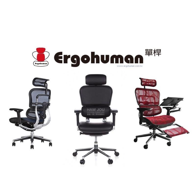 全新Ergohuman 111豪華小單槓 全真皮升級靠墊人體工學椅