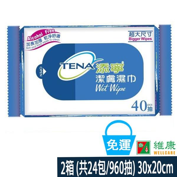 添寧 潔膚溼巾2箱 (每箱12包/每包40抽) 維康 免運 (濕紙巾柔濕巾) 限時促銷