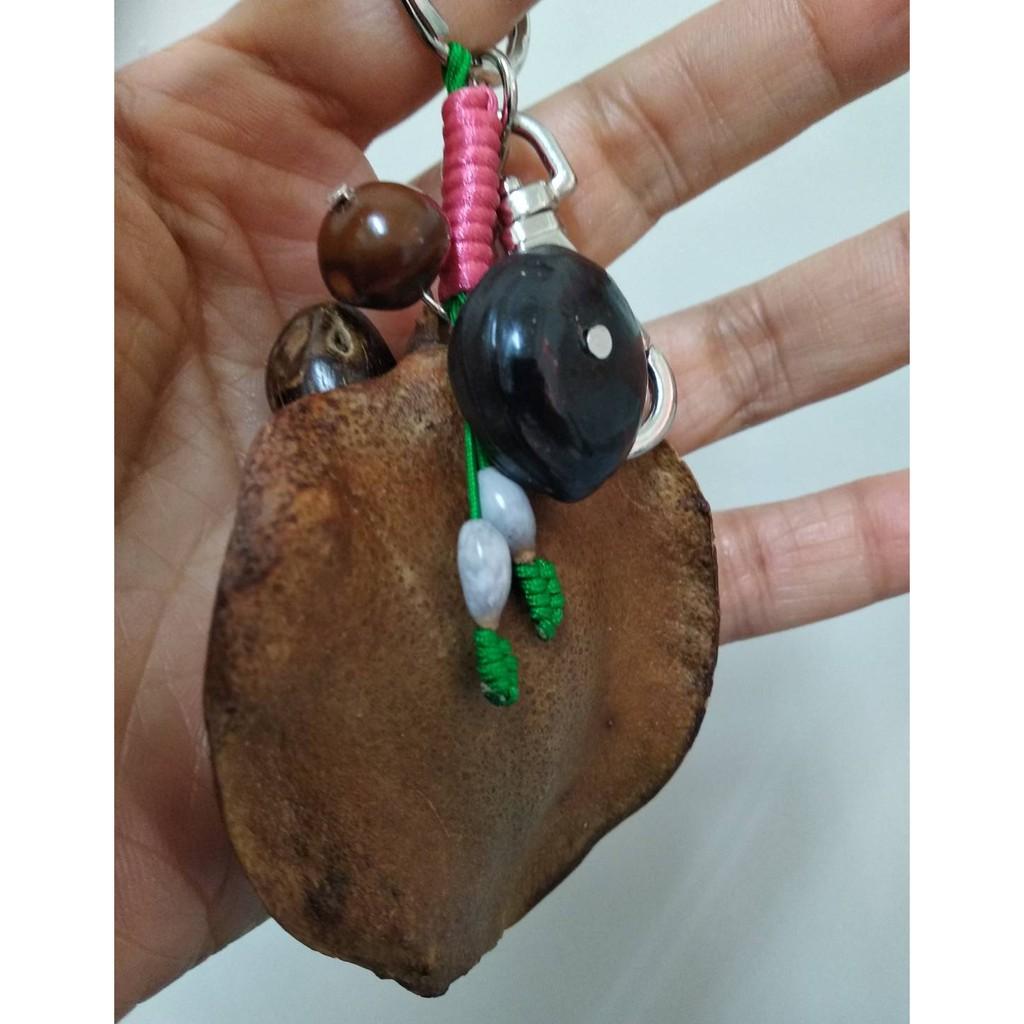 藍花楹種子鑰匙圈/送禮,生日,情人節禮物