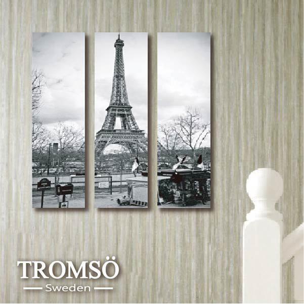 現貨 TROMSO時尚無框畫-W124 巴黎風情(迷你款)/ 鐵塔 空間 裝飾畫  【H0309173】