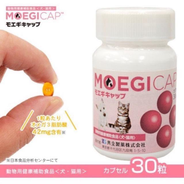 🐱小毛家 ✨貝節益膠囊錠狀犬貓日常保健 (膠囊)30顆 (錠)50錠 日本原廠