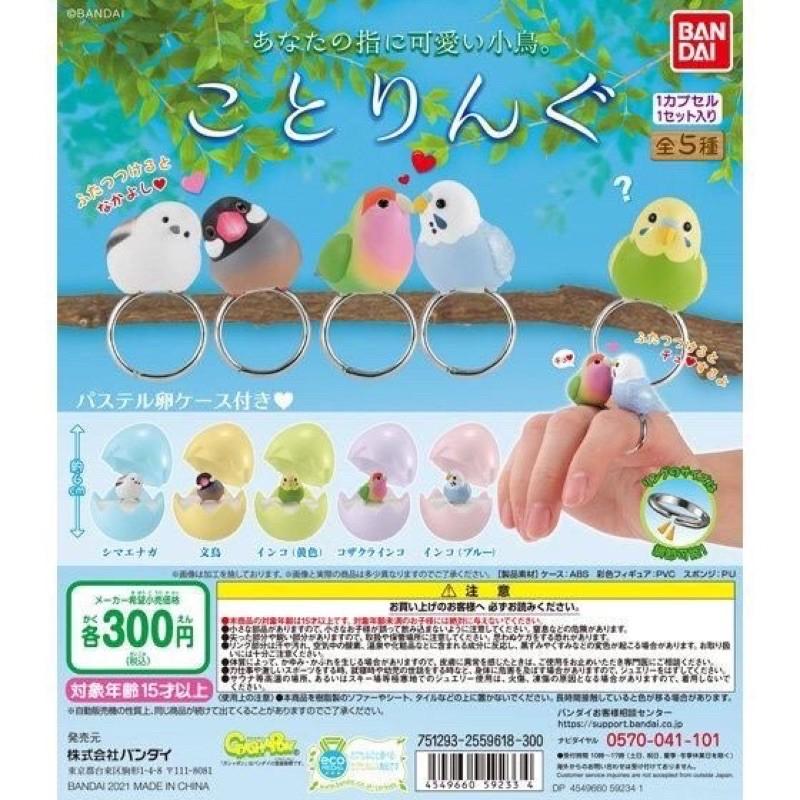 現貨 小鳥戒指環保扭蛋 BANDAI 扭蛋 轉蛋 日本