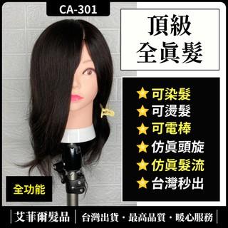 【真髮款】美髮頭 假人頭 可染燙 真人髮 100% 全真髮 12吋 10吋 16吋 18吋 臺中市