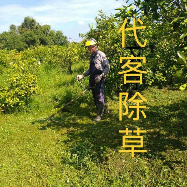 大台北地區代客除草砍樹