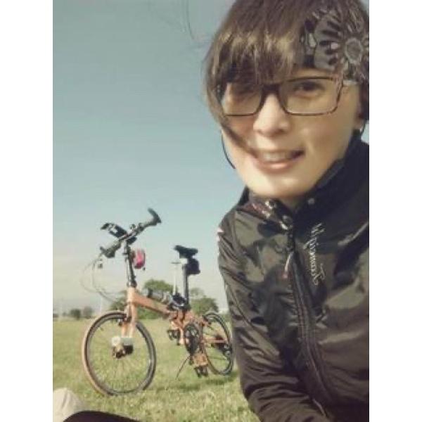 Dahon SP16 摺疊腳踏車