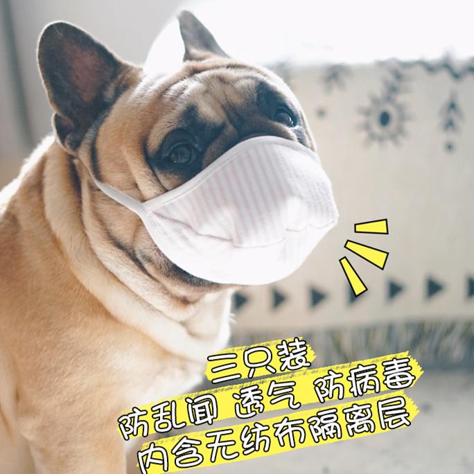 【快速出貨】狗狗口罩 寵物口罩 狗狗面罩 防細菌 防病毒 防飛沫 狗用外出三層無紡布口罩 可水洗 中小型犬專用口罩嘴罩