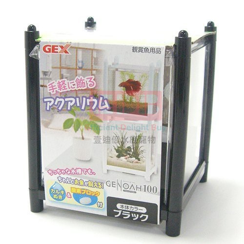 【GEX】GENOAH 100日本五味鬥魚缸-白
