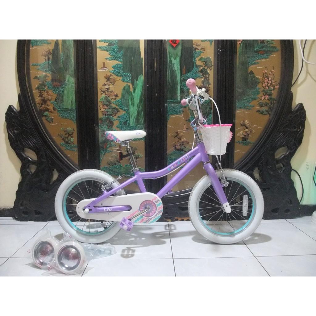 9成新捷安特adore 16鋁合金16吋兒童腳踏車,附全新輔助輪,前後燈鈴鐺,適合身高100-110之間騎乘桃園自取