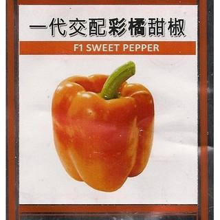【蔬菜種子S096】彩橘甜椒~ 10顆種子。植株生長旺盛,果實燈籠型,橘色甜椒,單果重約150~200公克,味甜品質好。