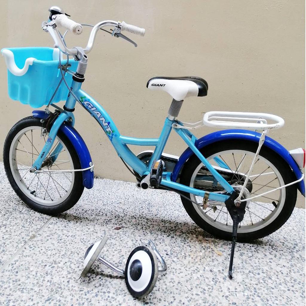 捷安特Giant 16吋KJ165 兒童腳踏車二手