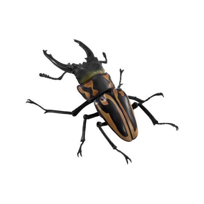 BANDAI 萬代 鍬形蟲 斑馬鋸鍬形蟲 隱藏版 特別版 環保扭蛋 造型轉蛋 扭蛋 轉蛋 4號