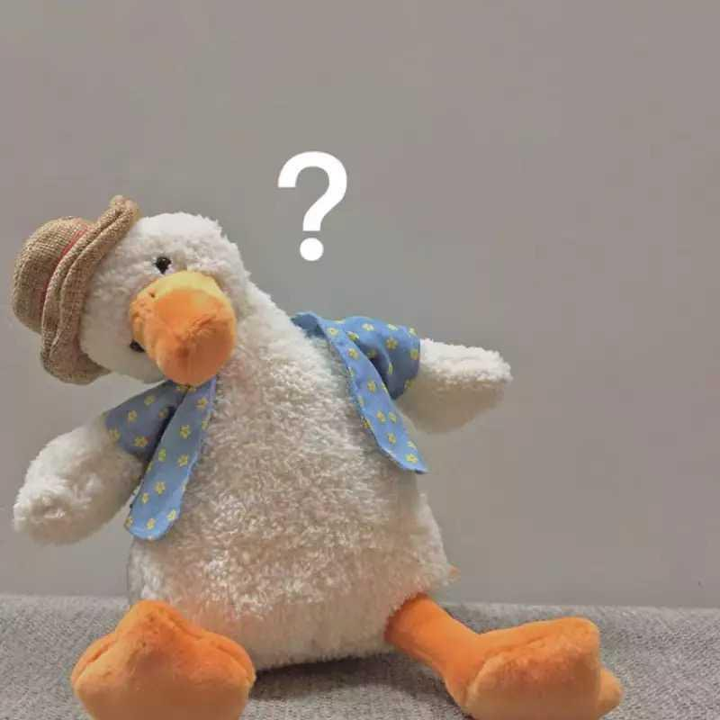 [現貨]3716丑萌玩偶女生北極熊毛絨玩具ins超丑公仔小黃鴨子加油鴨生日禮物