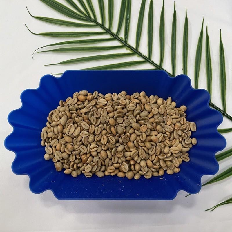 衣索比亞 耶加雪菲 日曬 G1 / 生豆 鋁箔包裝