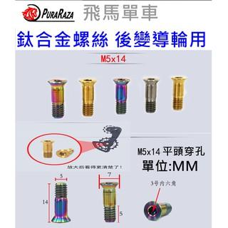 飛馬單車,Ti TC4內六角鈦合金M5*14mm,SHIMANO 鈦合金後變導輪螺絲,64鈦 Ti6AL4V,32鈦 嘉義縣
