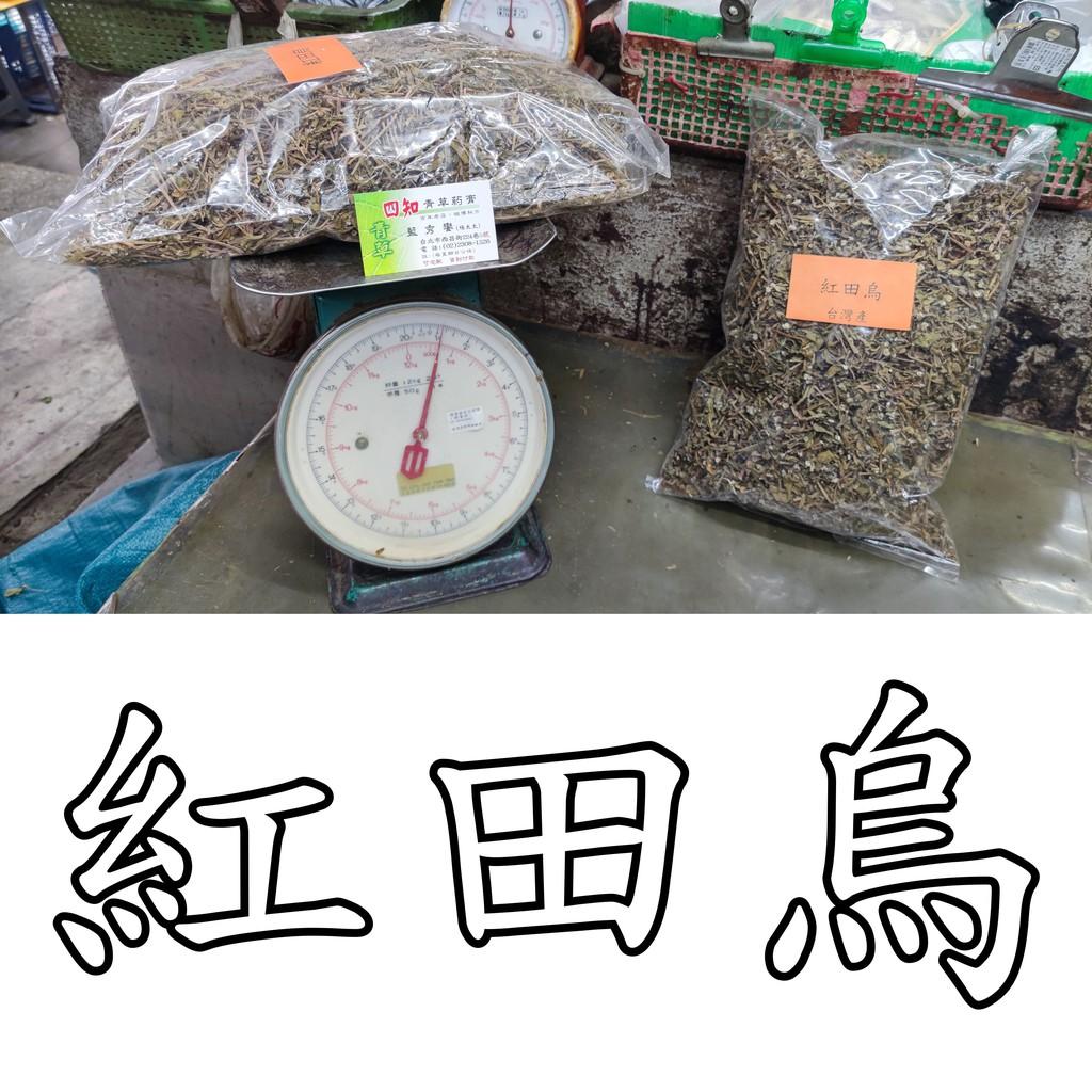 【四知青草店 青草巷5號】乾貨 紅田烏 1台斤 600克