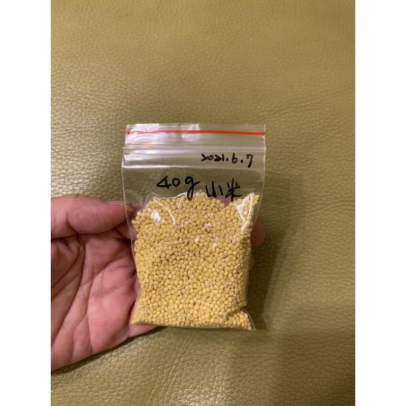 倉鼠主食分裝  鳥飼料 小米約40g