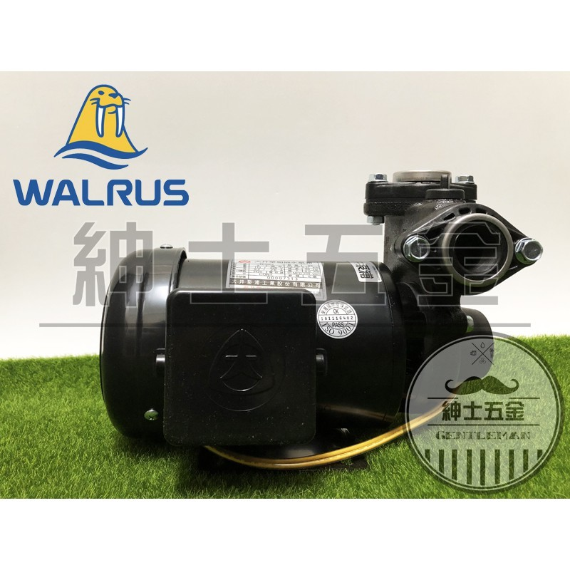 【紳士五金】❤️最新抗菌❤️TP320PTB 1/2HP 大井泵浦 傳統抽水機 塑鋼 不生鏽 含溫控開關 TP320PT