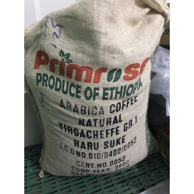 沐咖啡 衣索比亞 耶加雪菲完美日曬 哈魯產區 咖啡豆半磅320元 本賣場咖啡熟豆.都是接單兩天內現烘的