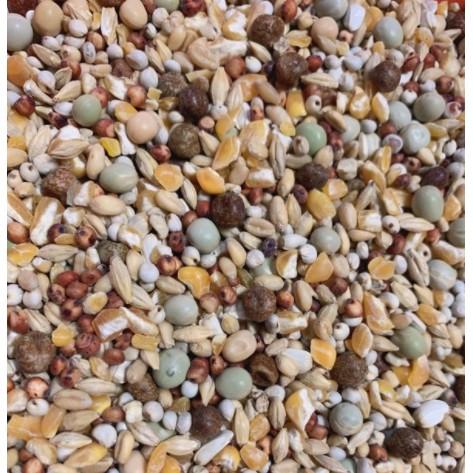 綜合穀料 鴿子飼料 玉米粒 玉米碎粒 碗豆 黃豆 高粱。賽鴿、中大型鸚鵡、鼠類、兔子...等都可以吃