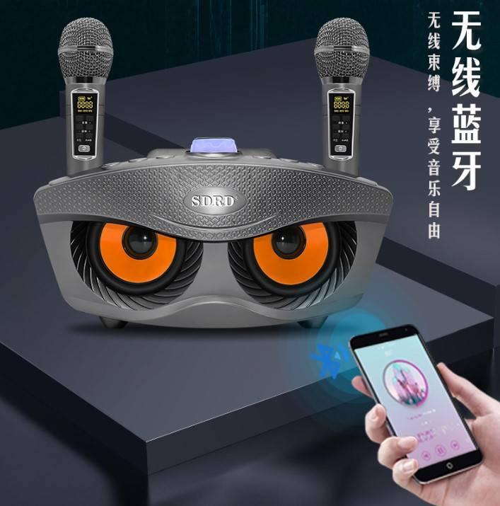 台灣現貨 升級款 SD306 Plus 藍牙音響 家庭KTV 音箱喇叭 無線麥克風 K歌寶 藍牙KTV 藍牙喇叭