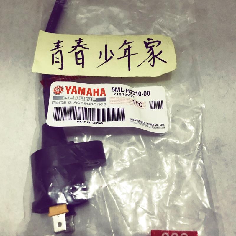 《青春少年家》YAMAHA 山葉 原廠 勁戰 一代 二代 125 化油 高壓線 高壓線圈 點火線圈