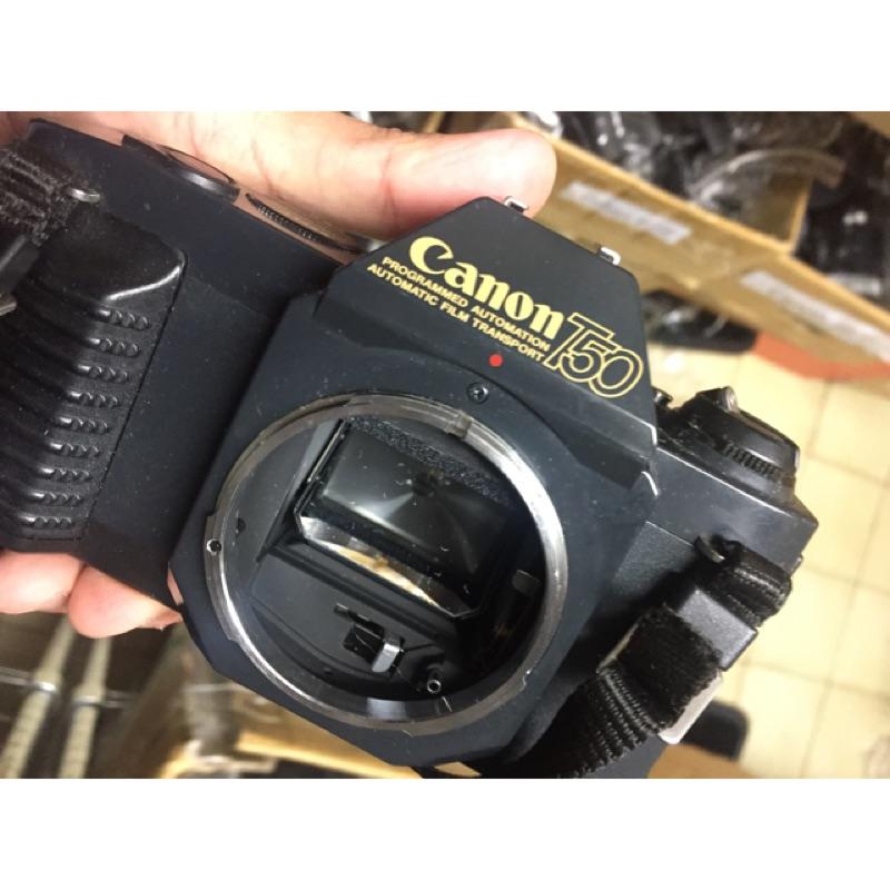 底片 單眼相機 美品 經典 canon t50