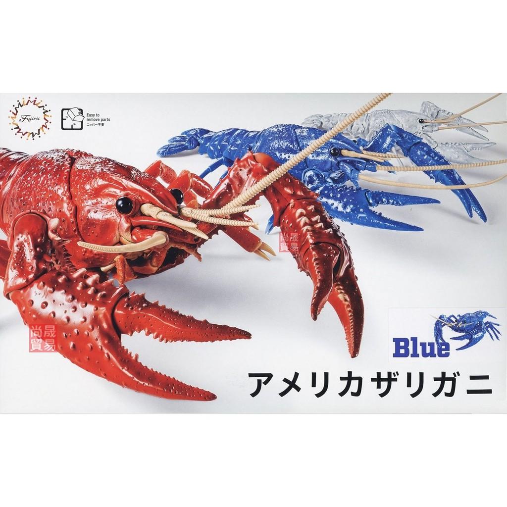 FUJIMI 生物編 美國螯蝦 藍色 自由研究24EX1 富士美 組裝模型
