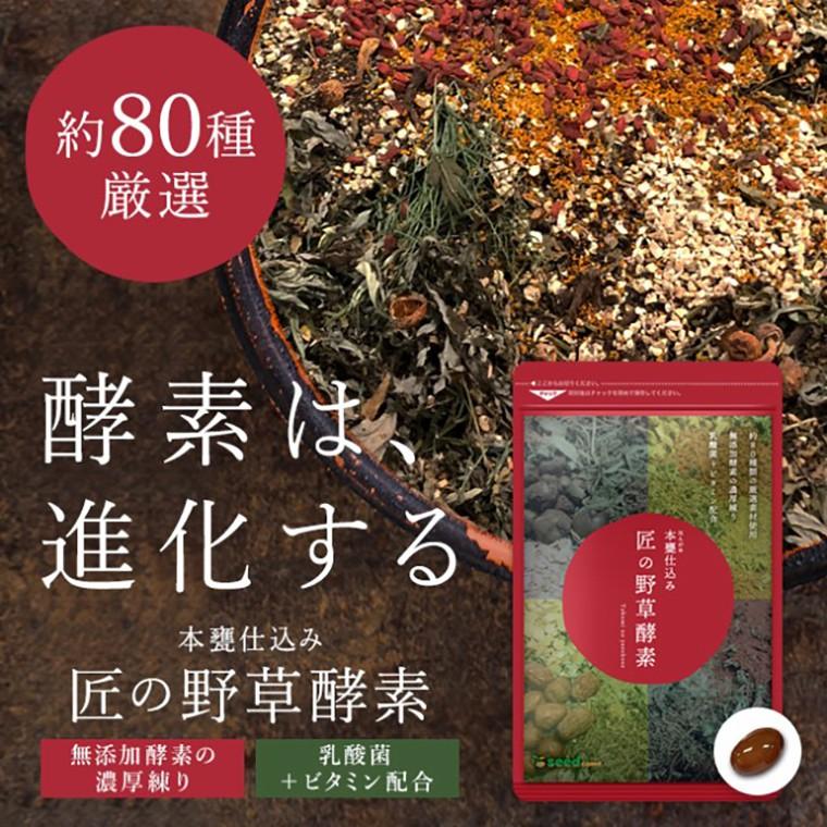日本 匠の野草酵素 80種野草酶濃縮 天然濃縮酵素 樂天熱銷品牌 乳酸菌 維生素 野草酵素