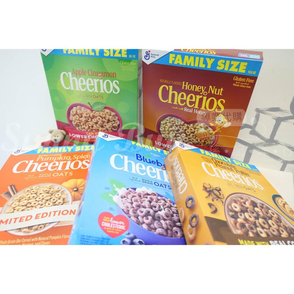 【Sunny Buy】◎現貨◎ Cheerios Honey Nut 家庭號 蜂蜜堅果 肉桂 巧克力早餐麥片