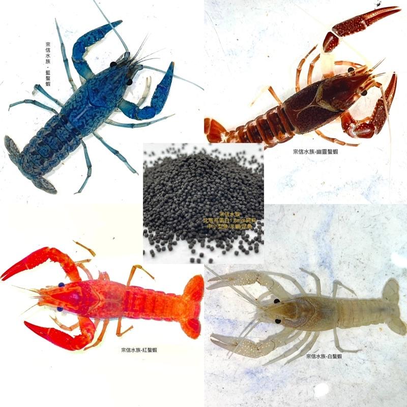 宗信水族-螯蝦飼料系列/幽靈螯蝦/紅螯蝦/藍螯蝦/白螯蝦