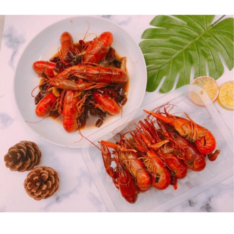 (   活  )澳洲淡水龍蝦    小龍蝦