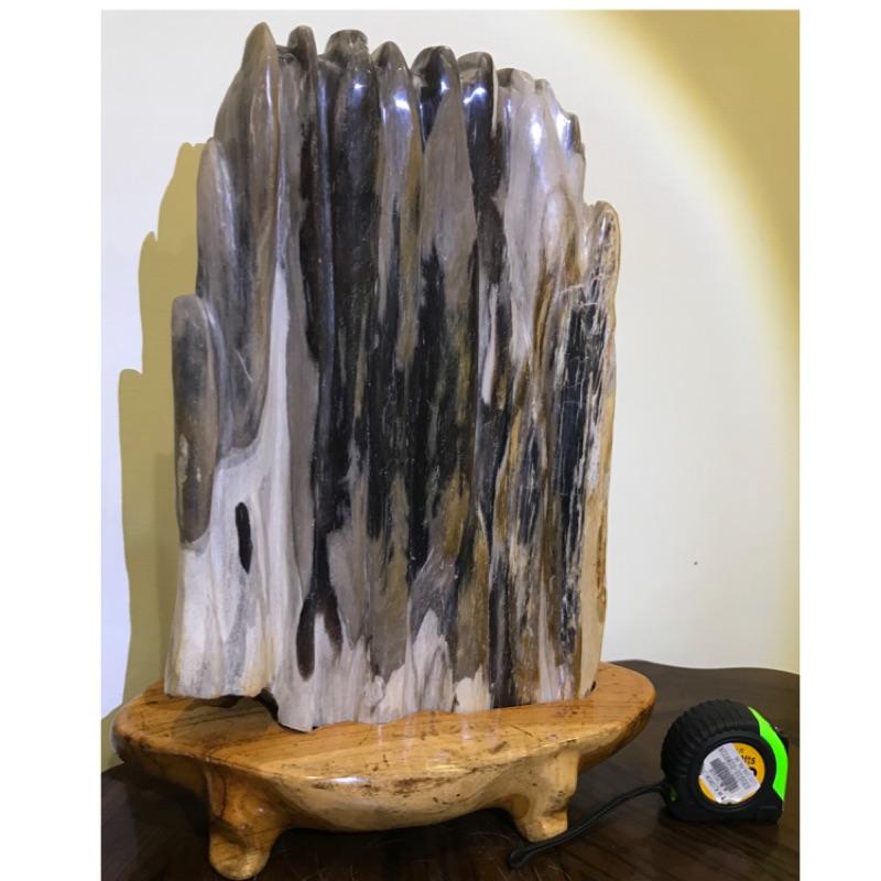 樹化玉 含柚木底座 10kg 木化石 木化玉 樹化石(文昌筆 聚寶盆 紫水晶 台灣黃檜 肖楠 龍柏 龍筆 藝品架 都有)