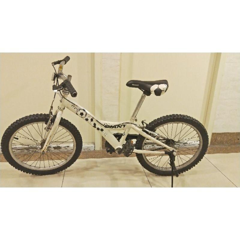 捷安特兒童20吋腳踏車二手面交