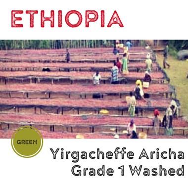 衣索比亞 耶加雪菲 艾瑞嘉 Aricha G1 日曬/ 厭氧日曬