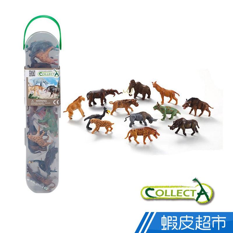 collectA 迷你史前動物組 (盒裝-12入)~英國高擬真模型R1100 廠商直送 現貨