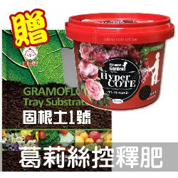 【現貨】Hyper COTE福壽葛莉絲緩效控釋肥料1號(11-11-15+2)玫瑰多肉肥500公克+贈固根土1號5公升