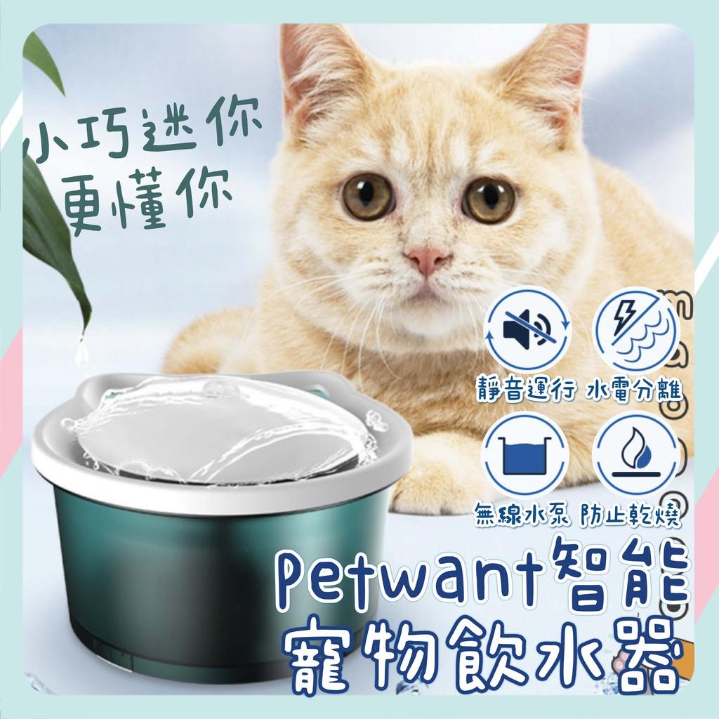 🐾Petwant 迷你智能寵物飲水器🐾超靜音 防乾燒 寶石綠色 小巧靜音 小小貓用 智能飲水機
