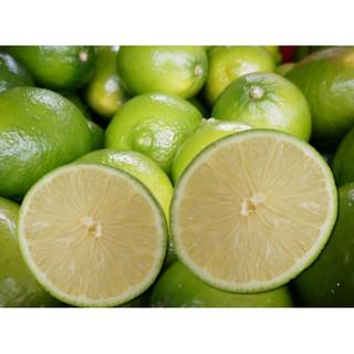 檸檬汁原汁100%24瓶免運