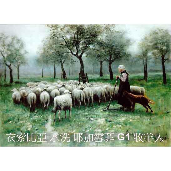 衣索比亞 水洗 耶加雪菲 G1 牧羊人