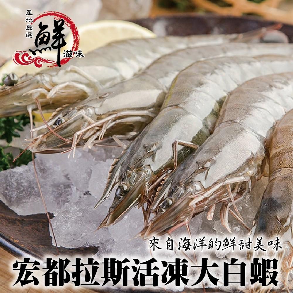 宏都拉斯活凍白蝦(每盒48-56隻/共約1kg±10%)【海陸管家】