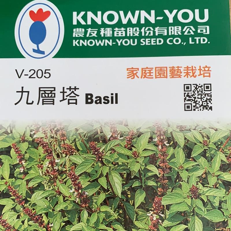 九層塔 Basil【蔬果種子】農友種苗 彩色原包裝 原廠密封包裝