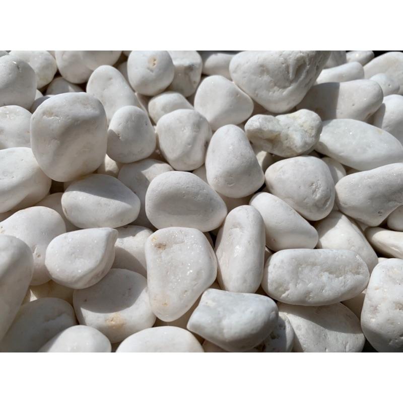 小石頭大世界🌏 漢白玉 特白卵石 庭園造景資材 步道 園藝資材