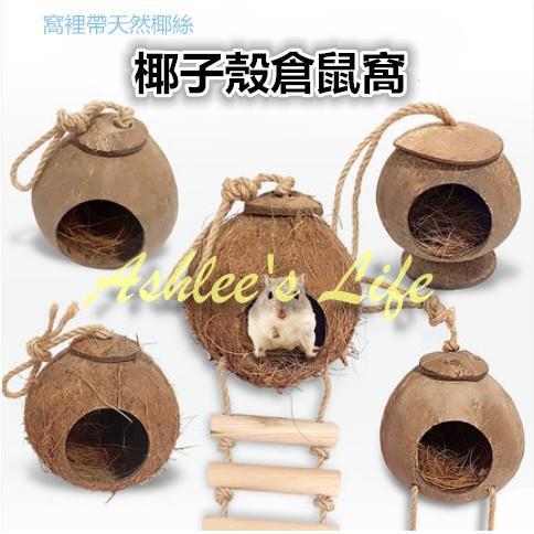 Ashlee's Life✨小寵窩 保暖窩 刺蝟/天竺鼠/松鼠睡窩椰子殼倉鼠刺猬窩寵物用品小房